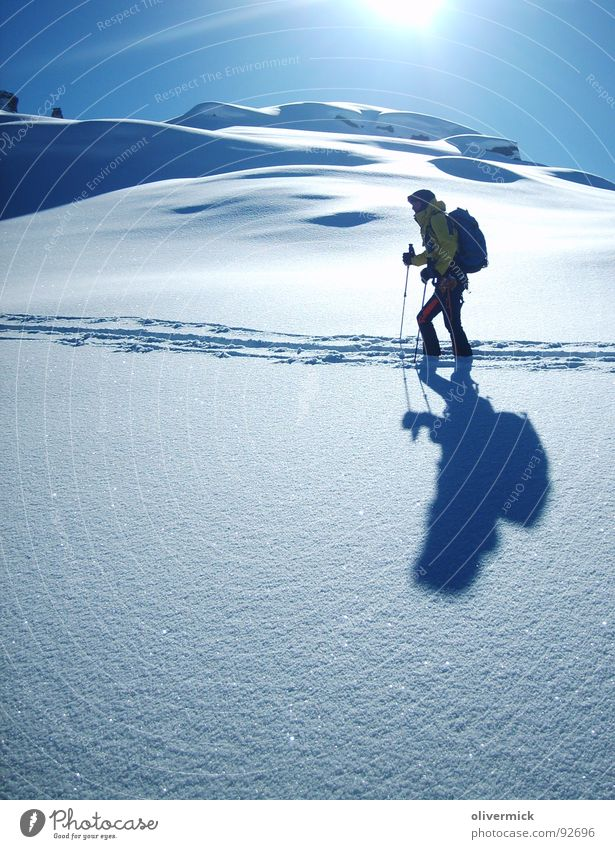 winter paradise Back-light Moody Mountaineer Ski tour Skier Snow crystal Powder snow Snow track Winter Winter mood Sports Playing Sun light/dark