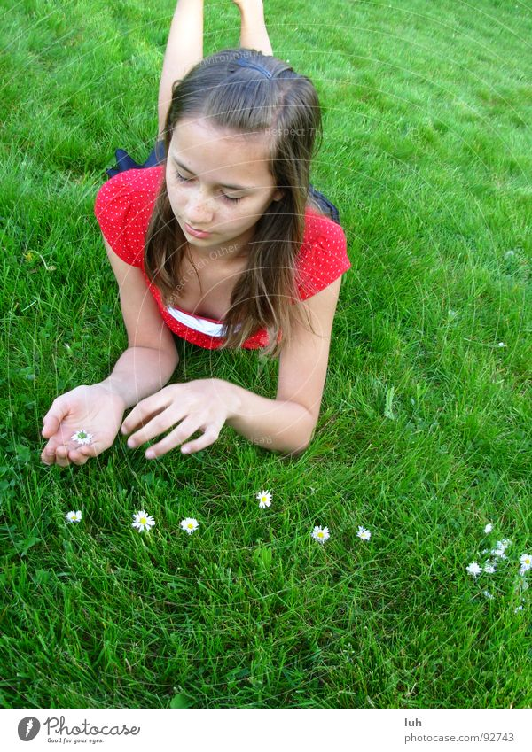 Count the signs of summer. Green Meadow Grass Daisy Flower Lie Relaxation Summer Spring Lawn Numbers Nature Girl 13 - 18 years Long-haired Dark-haired Brunette