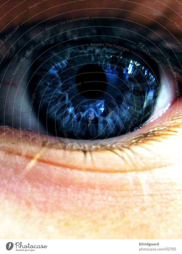 Child White Blue Joy Eyes Life Dark Emotions Style Dream Lake Think Skin Glittering Large Communicate