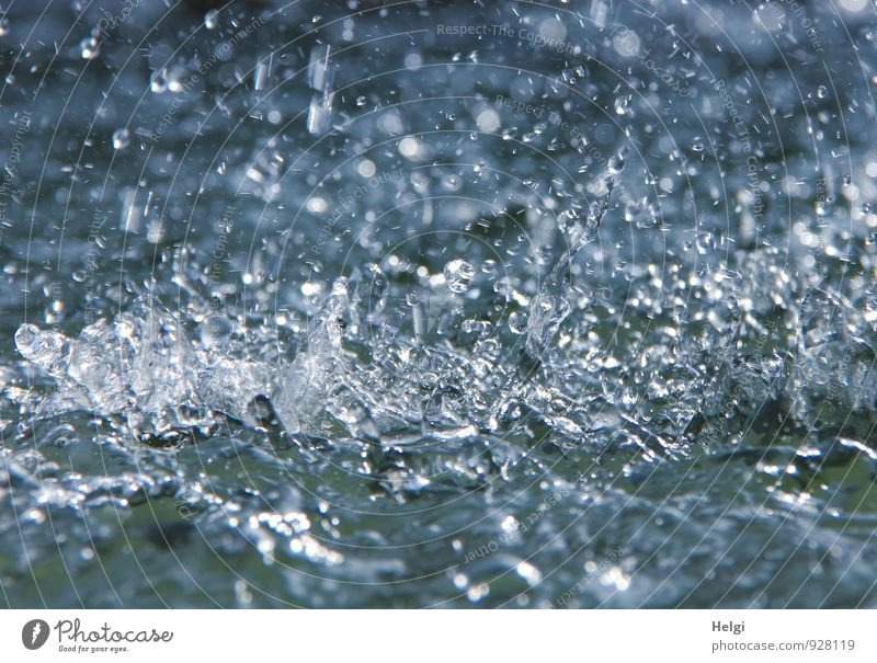 ...and splashes... Environment Water Drops of water Movement To fall Glittering Esthetic Authentic Fresh Cold Wet Natural Clean Blue Gray White Bizarre