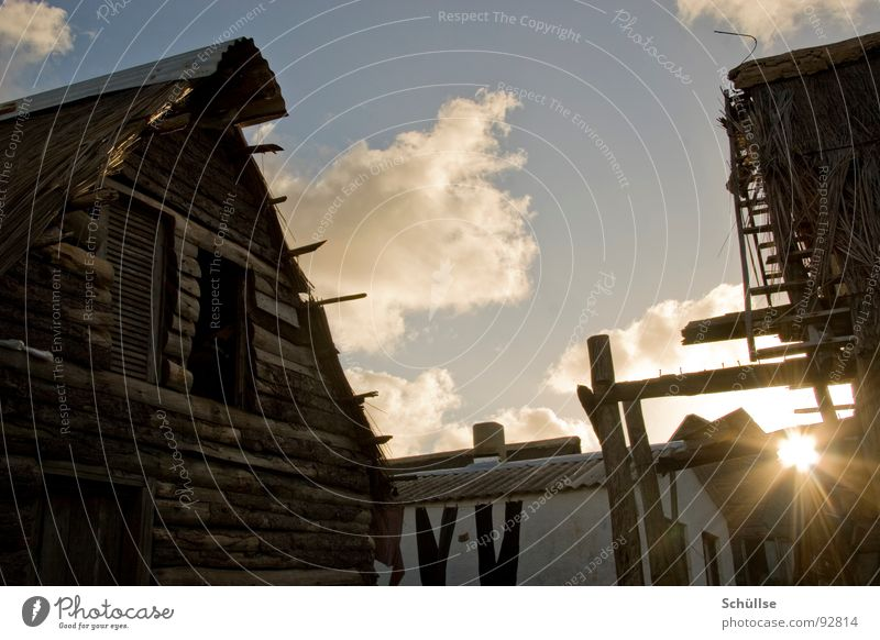 Old Sun House (Residential Structure) Wood Village Hut Barn Sylt Warped South America Self-made Evening sun Wooden house Brittle Marsh grass