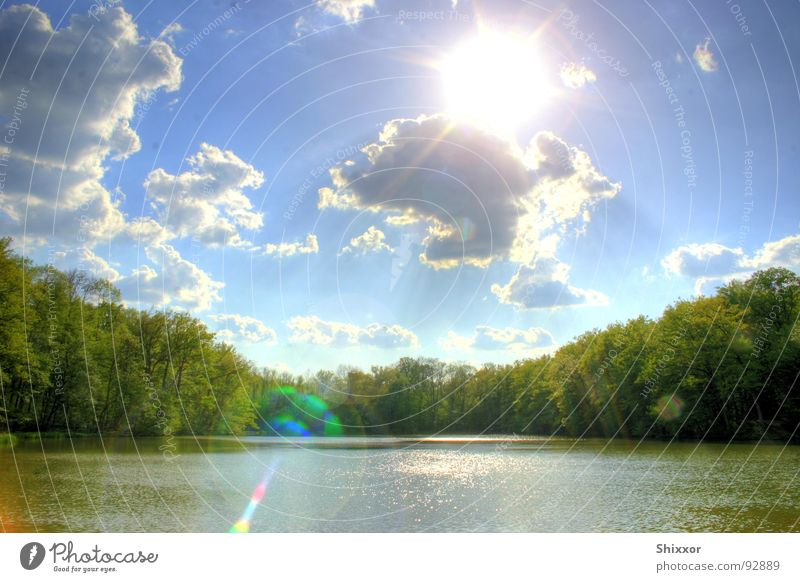 Nature Water Sky Tree Sun Calm Clouds Forest Lake Weather Stuttgart HDR