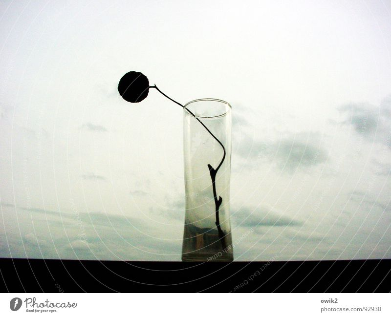 Sky Old Loneliness Clouds Calm Sadness Style Design Decoration Elegant Gloomy Glass Esthetic Uniqueness Grief Longing