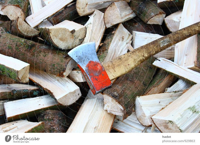 logs Axe Forest Wood Blue Firewood Stack of wood Open fire Blaze Tree trunk Colour photo Exterior shot Deserted Long shot