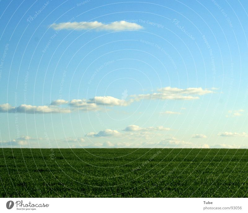 Over the horizon..... Clouds Meadow Green White Home country Saxony Exterior shot Grass Horizon Agriculture Field Hole in the ozone layer Ozone layer Oxygen