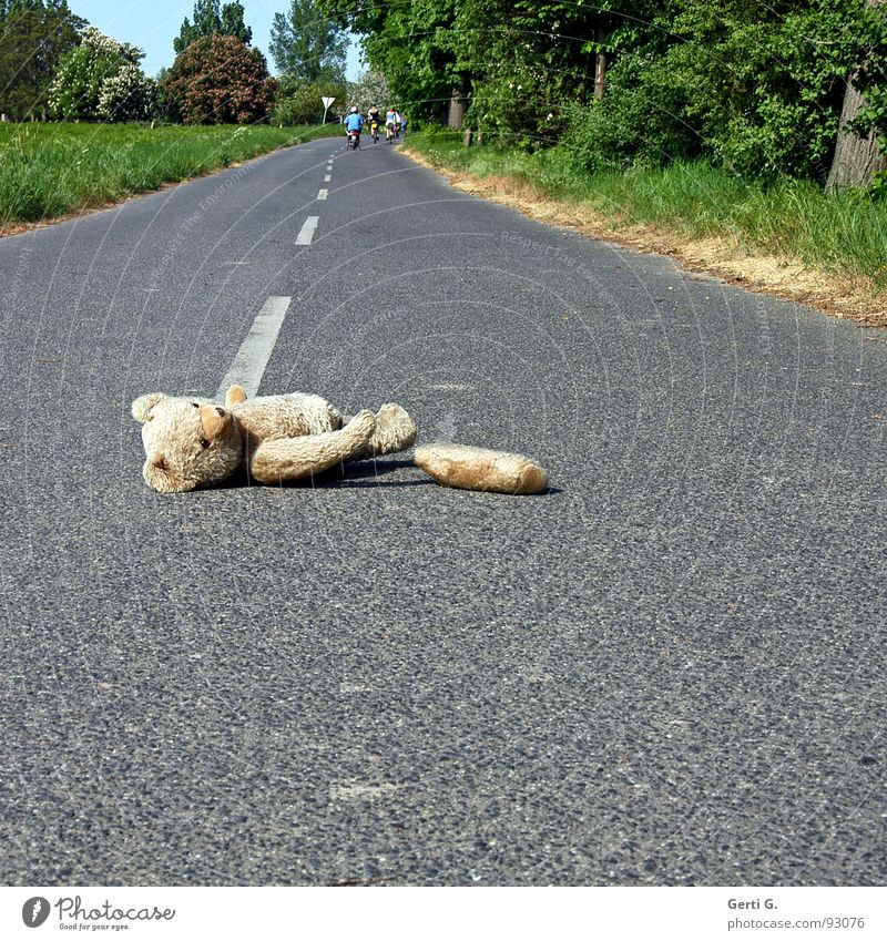 hit and run Flee Depart Droop Accident First Aid Doomed Traffic accident Asphalt Middle of the road Tracks Animal Cuddly toy Teddy bear Toys Median strip Amazed