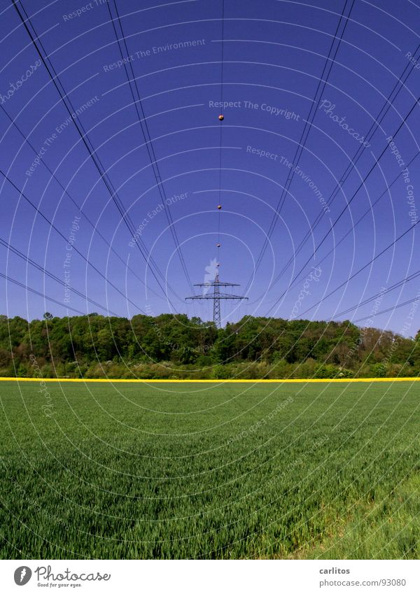 Sky Green Blue Yellow Forest Spring Line Field Weather Electricity Cable Middle Electricity pylon Canola Suction