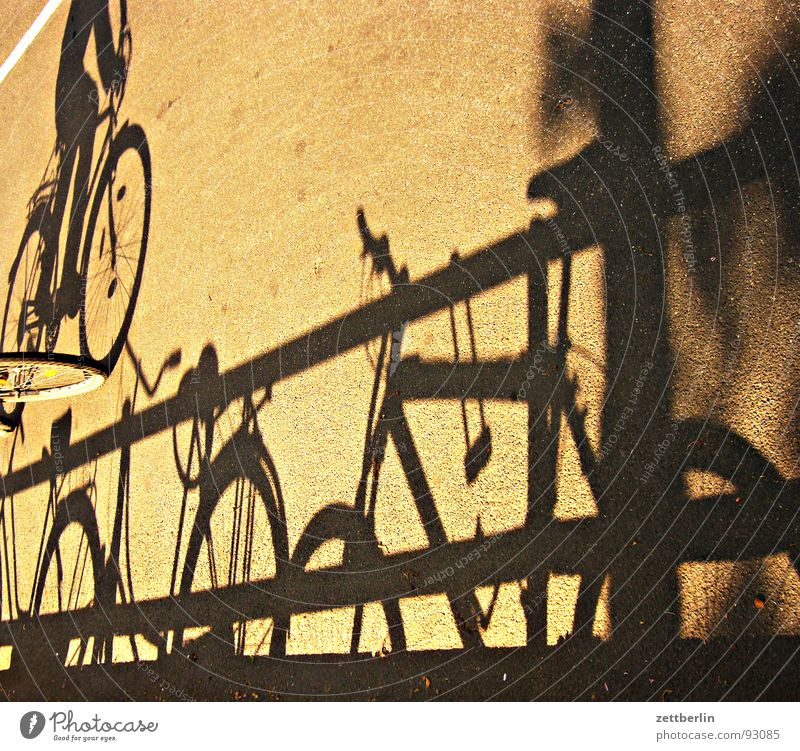 shadow Shadowy existence Shadow play Bicycle Ladies' bicycle Kiddy bike Tour de France Asphalt Driving Cycling Traffic infrastructure Fitness Obscure