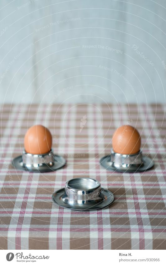 wings Egg Nutrition Breakfast Organic produce Vegetarian diet Bright Emotions Together Beginning End Life fledged Egg cup Colour photo Subdued colour