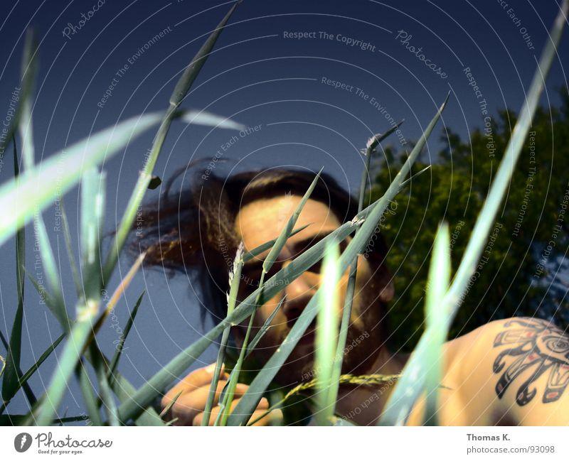 Sky Tree Summer Relaxation Meadow Grass Garden Wind Lawn