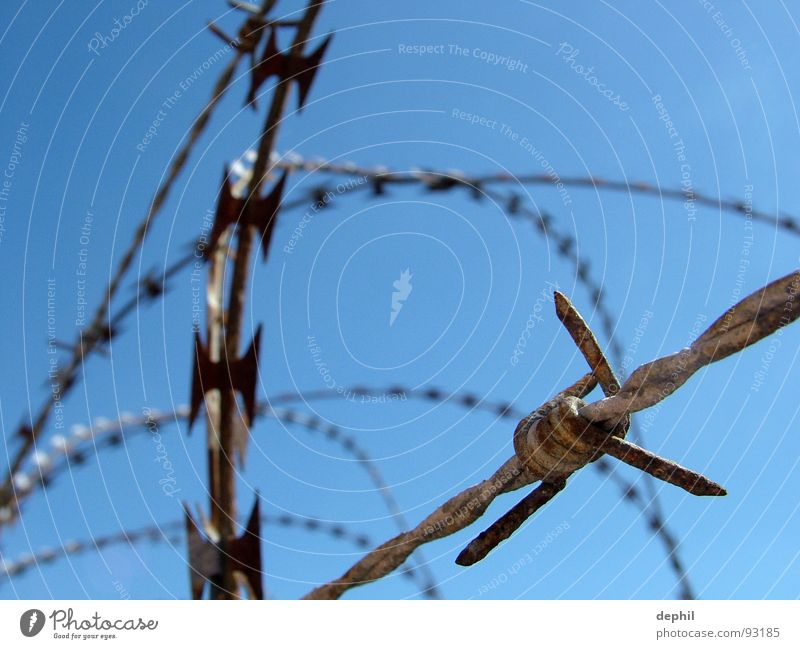 keep out Barbed wire Fence Safety Barrier Stop Iron Wire Thorny Dangerous Fortress safety precaution no access fencing off Rust