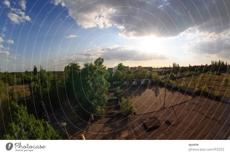 50/50 Fisheye Panorama (View) Germany Hot Dry White Air Sky Back-light Clouds Gray Tree Fallow land Forest Gloomy Nature May Green Brown Half Horizontal