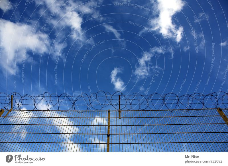the sky knows no boundaries Environment Sky Clouds Climate Climate change Weather Beautiful weather Blue Border Fence Barbed wire Barrier Wire fence Freedom