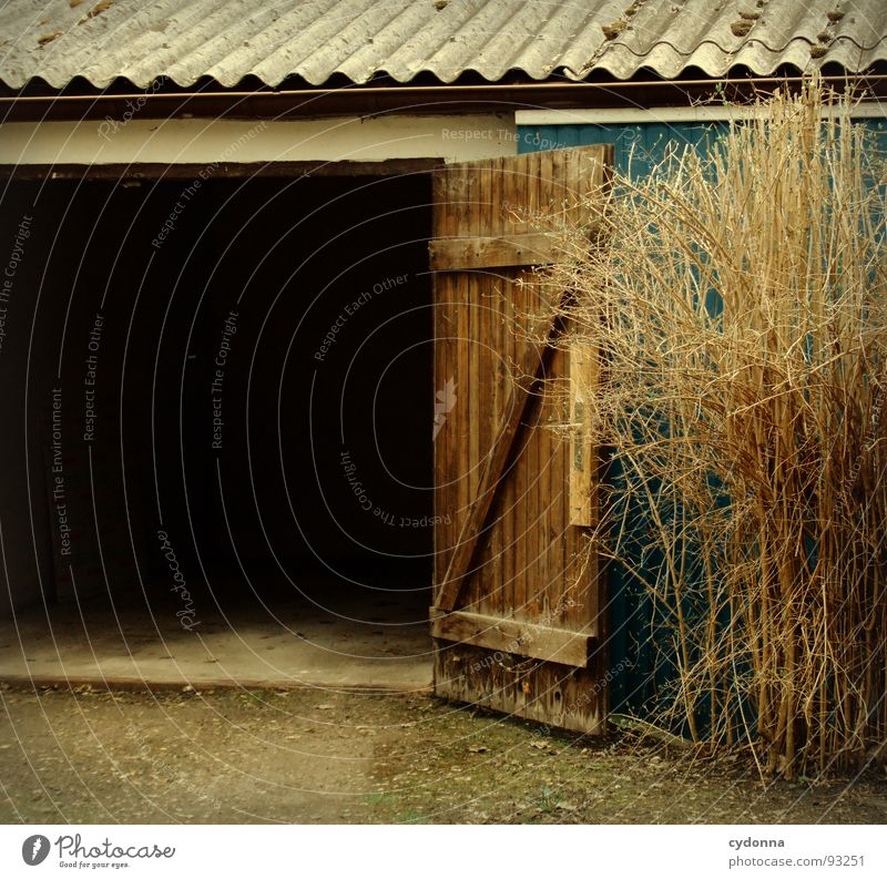 Black Dark Building Weather Door Room Places Exceptional Dangerous Safety Bushes Protection Mysterious Gate Hut Entrance
