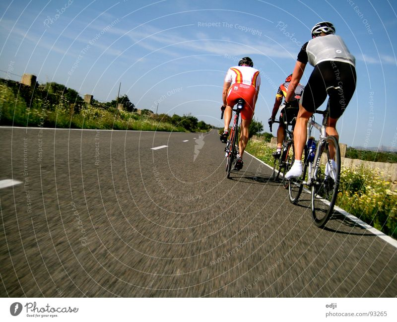 Street Sports Bicycle Speed Asphalt Fitness Driving Cycling Cycle race Racing cycle