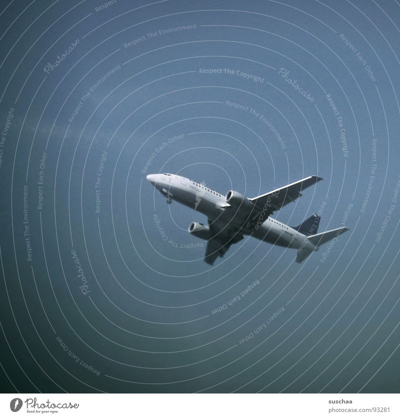 Sky Vacation & Travel Airplane Beginning Airport Frankfurt Wanderlust Runway Arrival Homesickness