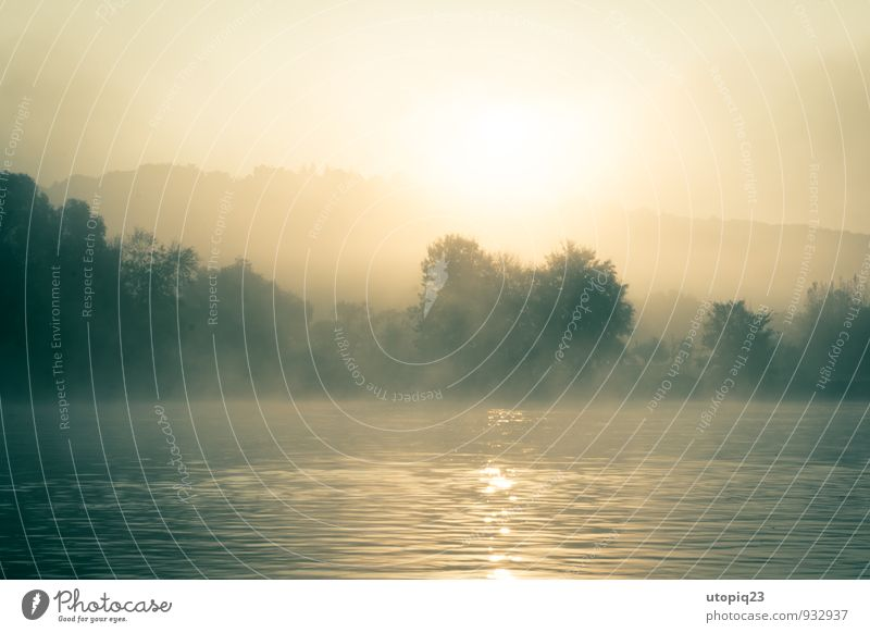 Morning mist at the river Nature Landscape Water Sunrise Sunset Sunlight Fog River bank Brown Yellow Gold Silver Force Peaceful Dream Loneliness Mysterious