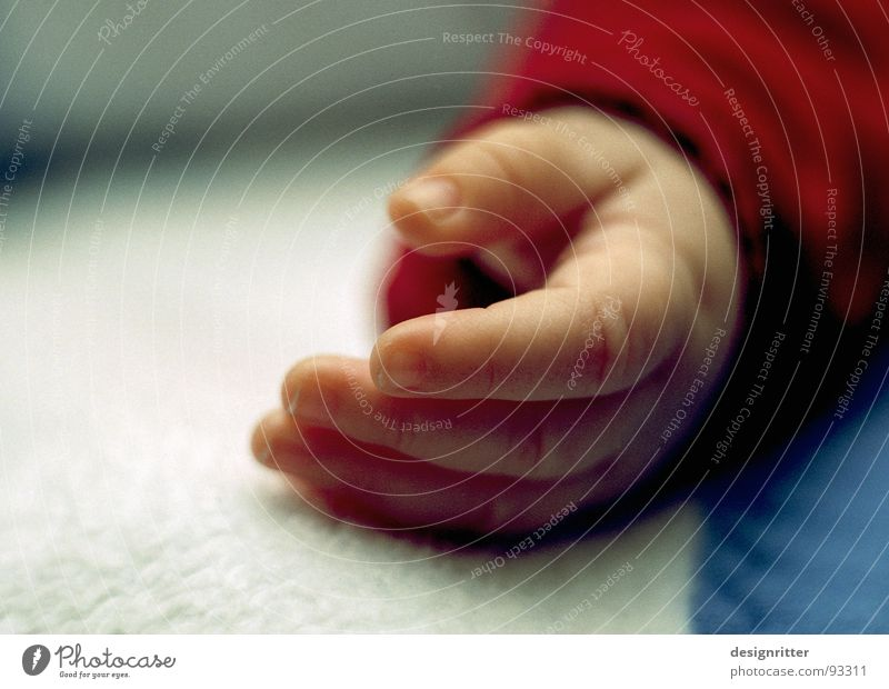Child Hand Baby Small Fingers Sleep Delicate Toddler Fragile Peaceful Born
