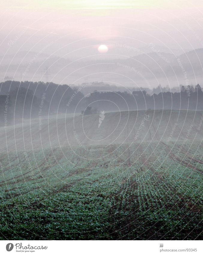 czech morning fog Fog Sunrise Field Wake up Morning fog Czech Republic Hill Europe Power Force Valley Furrow Landscape