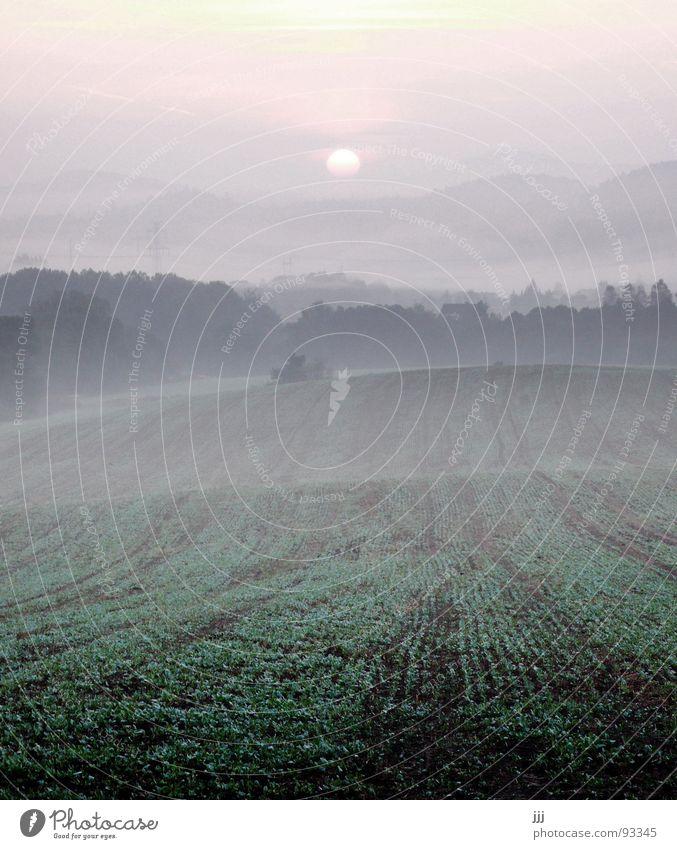 Sun Landscape Power Field Fog Europe Force Hill Furrow Valley Wake up Morning fog Czech Republic