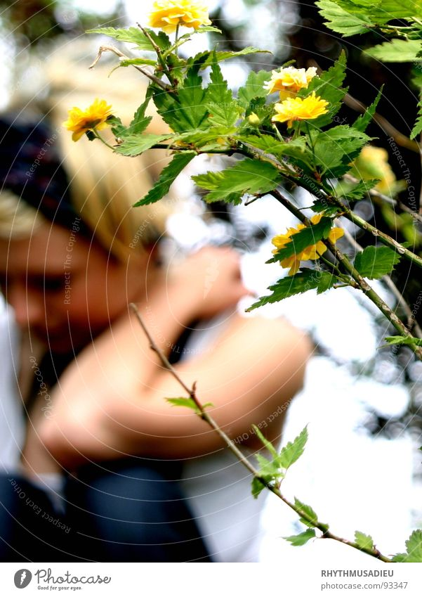 Woman Nature Flower Green Summer Yellow Blossom Twig