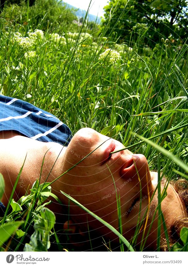 enjoy the sun... To enjoy Summer Grass Relaxation Calm Meadow Green schilln