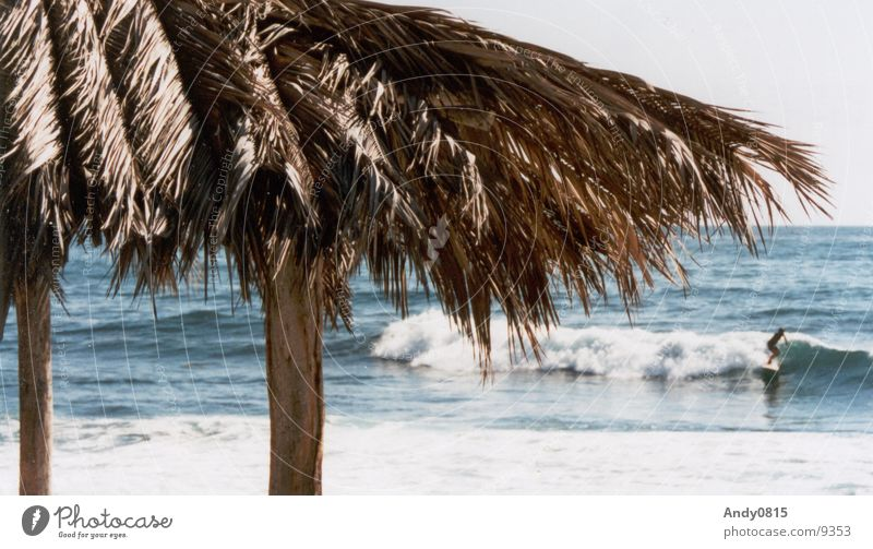 Ocean Blue Beach Vacation & Travel Cuba Surfer California