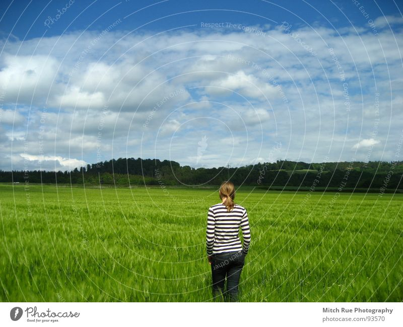 Nature Beautiful Sky Green Blue Calm Clouds Far-off places Meadow Emotions Grass Spring Freedom Happy Sadness Contentment