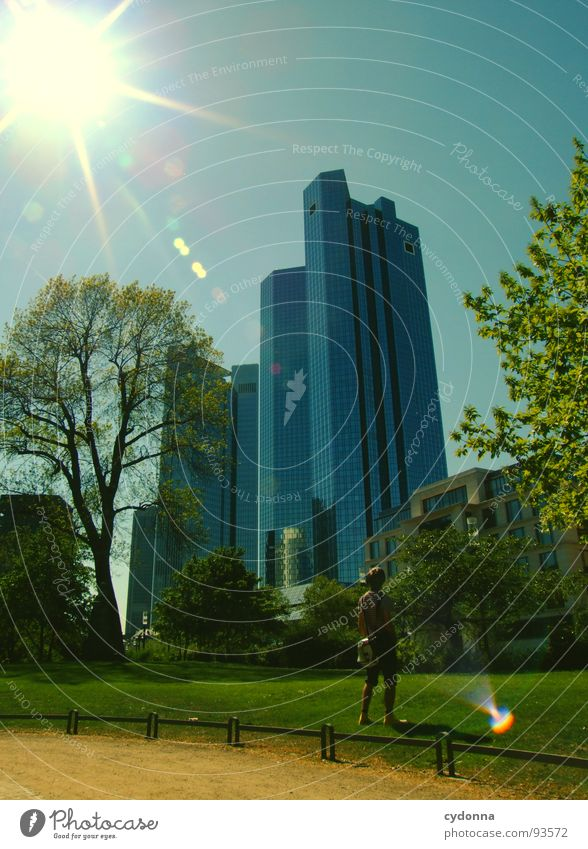 Frankfurt a.M. High-rise Park Meadow Relationship Man Town Tree Groomed Effect Desire Far-off places Converse Landmark Tourist Outsider Architecture Might