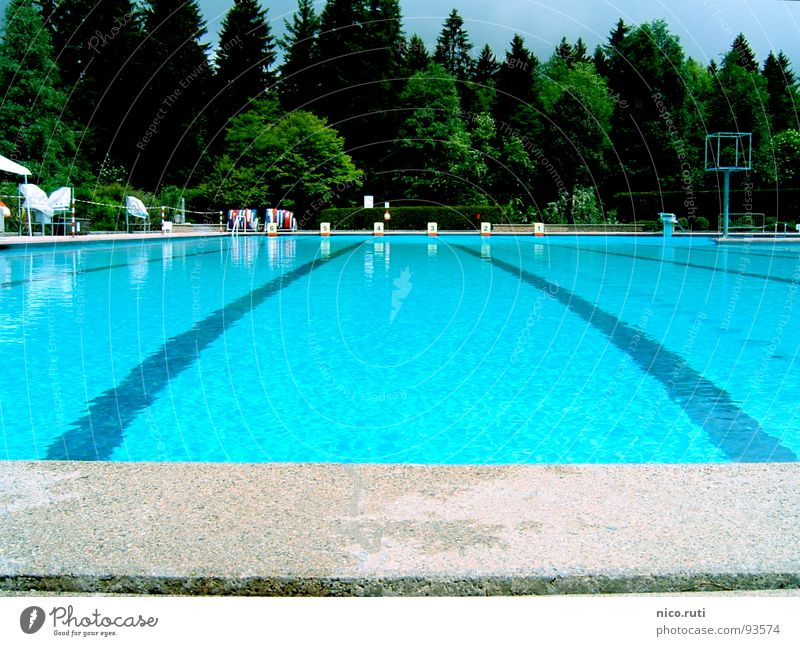 Water Tree Green Blue Forest Sports Playing Gray Stone Beginning Swimming pool Clarity Fluid Sporting event Transparent Competition