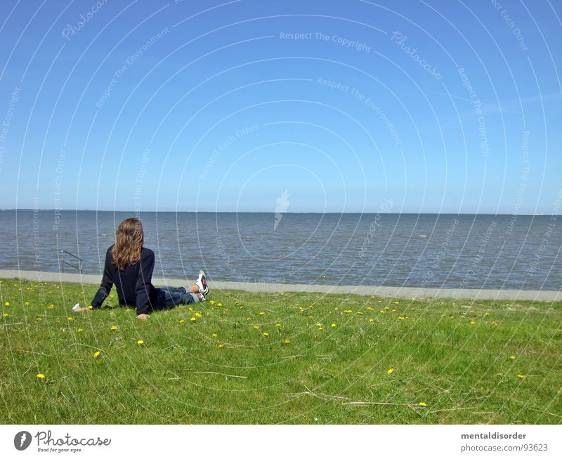 longing Ocean Relaxation Longing Grass Green Woman Search Find Horizon Far-off places Leisure and hobbies Emotions gazing Water Sand Lawn Blue Sit Looking