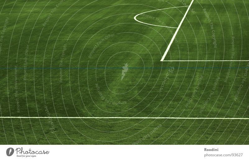 Green Meadow Sports Playing Line Field Soccer Places Empty Ball Lawn Individual Playing field Border Fan Stadium