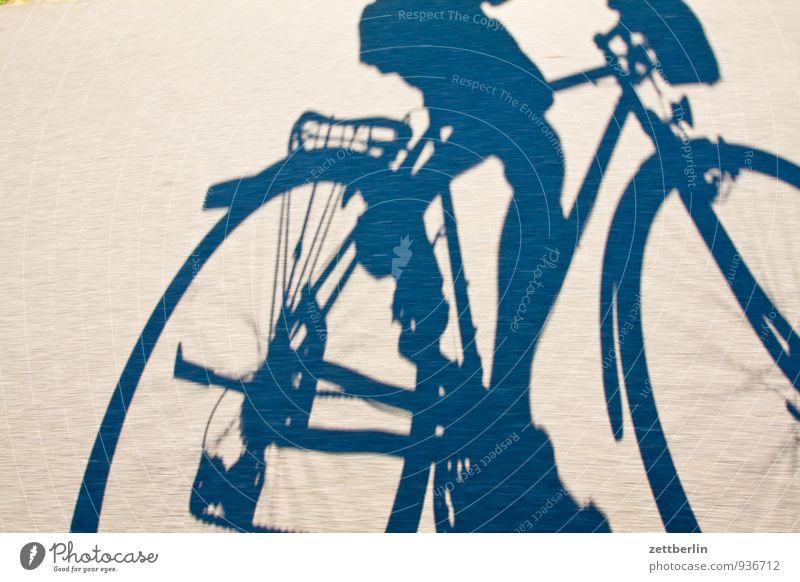 Human being Vacation & Travel Man Movement Sports Bicycle Speed Cycling Cycling tour Asphalt Running Wheel Racing sports Dynamics Passenger traffic Frame