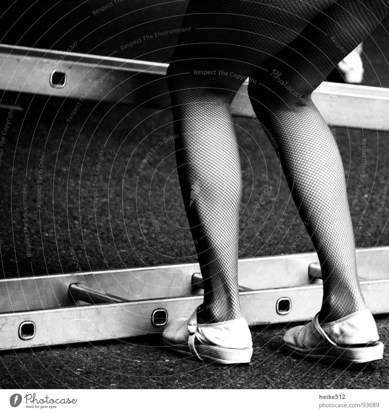 Leg Show Tights Slippers Shuffle Stockings Calf Black & white photo Beautiful Legs leg show Musculature nylon stockings lap Thigh