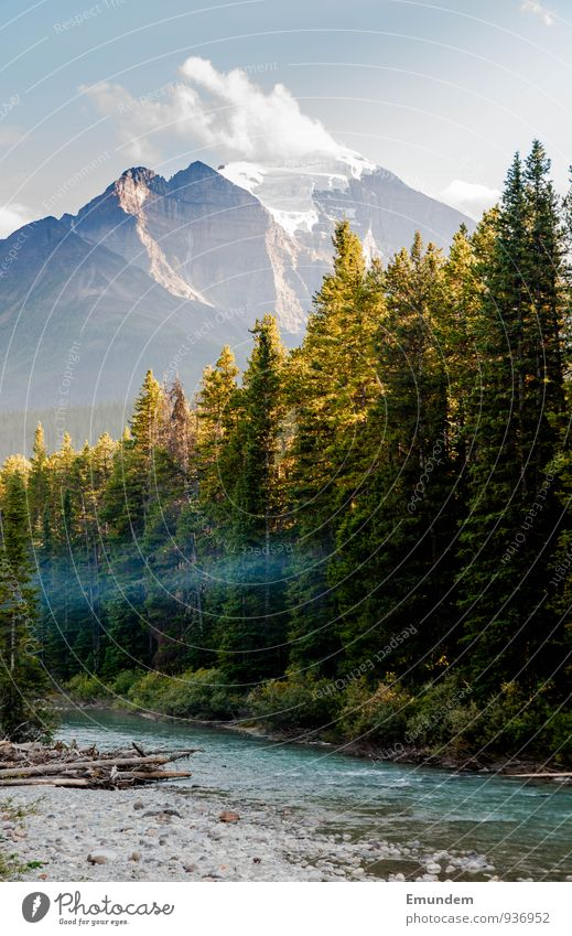 Jasper Environment Nature Landscape Water Sky Clouds Summer Autumn Beautiful weather Tree Forest Brook River Canada Americas Adventure Relaxation