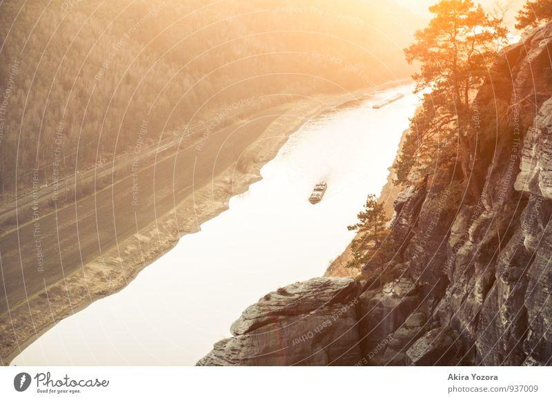Enjoy the golden Sun II Vacation & Travel Tourism Cruise Hiking Nature Landscape Sunrise Sunset Sunlight Beautiful weather Tree Rock Mountain Saxon Switzerland