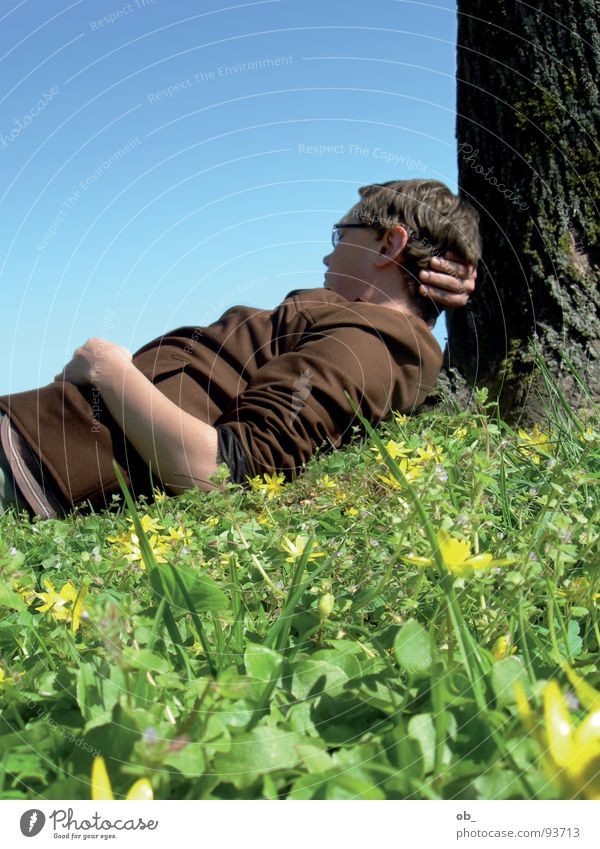single circuit Tree Meadow Lean Dreamily Fellow Man Spring Relaxation Inattentive Single Sky Blue Beautiful weather