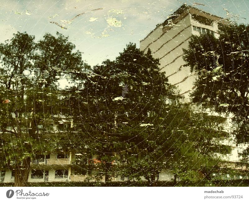 Nature Water Tree City House (Residential Structure) Building Wet High-rise Facade Peace Transience Idyll Fluid Painting and drawing (object) Surrealism