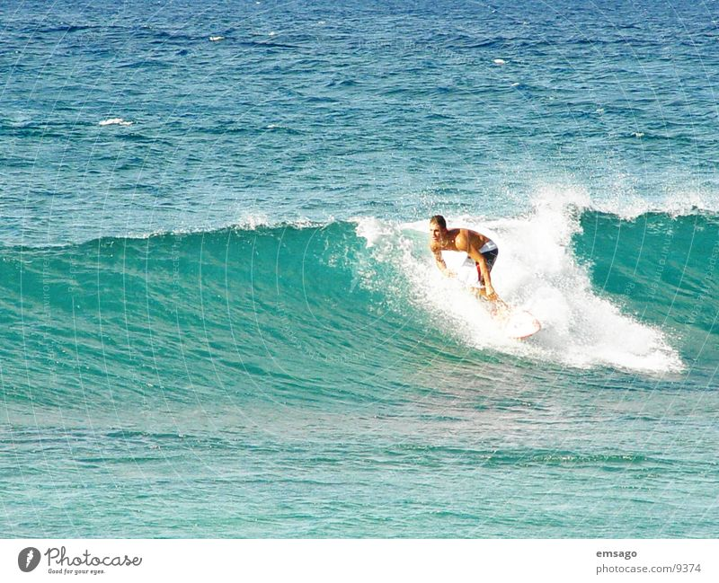 surfers Surfer Waves Ocean Hawaii Surfing Extreme sports
