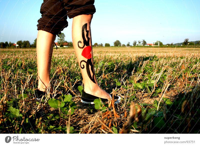 heart Footwear Field Playing Development Woman Legs Feet Sky Trust Joy Life