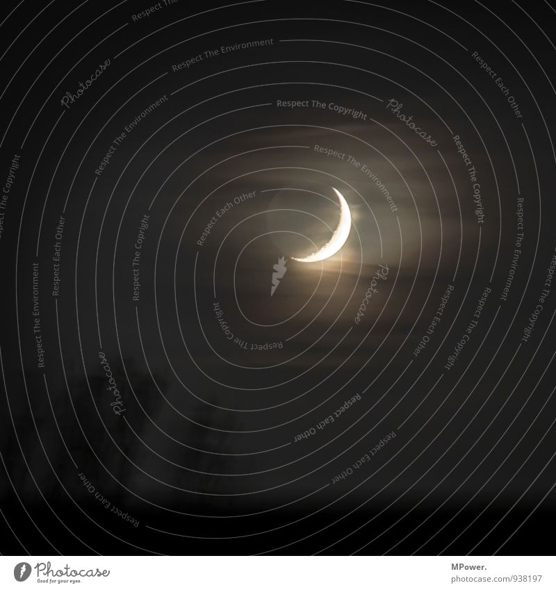 nightlight Fog Bright Moon Crescent moon Clouds Spooky Illuminate Subdued colour Exterior shot Deserted Copy Space top Night Low-key