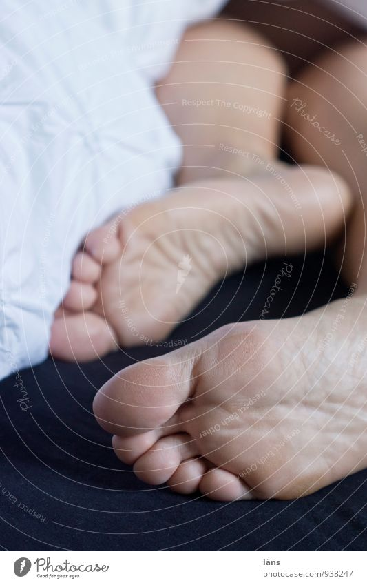 Fuck you guys... Well-being Contentment Relaxation Calm Living or residing Bedroom Human being Life Skin Feet 1 Lie Sleep Serene Bedclothes Sole of the foot