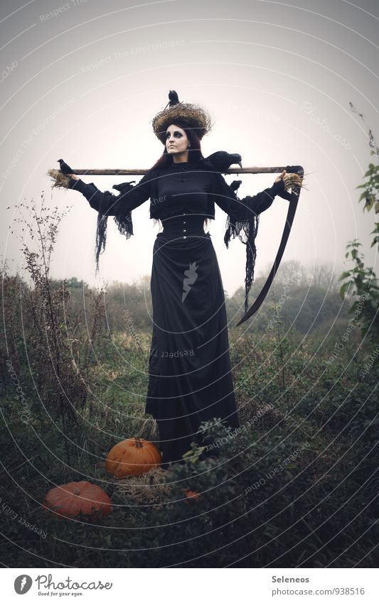 1100 l autumn harvest Pumpkin Pumpkin time Carnival Thanksgiving Hallowe'en Scythe The Grim Reaper Human being Feminine Woman Adults Environment Nature