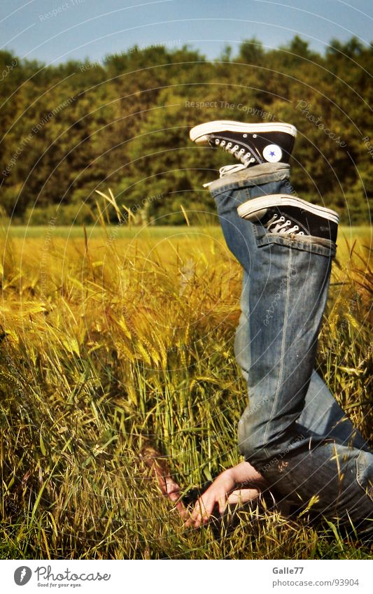 Human being Summer Joy Relaxation Emotions Grass Footwear Field Funny Free Tall Star (Symbol) To fall Dive Grain Chucks