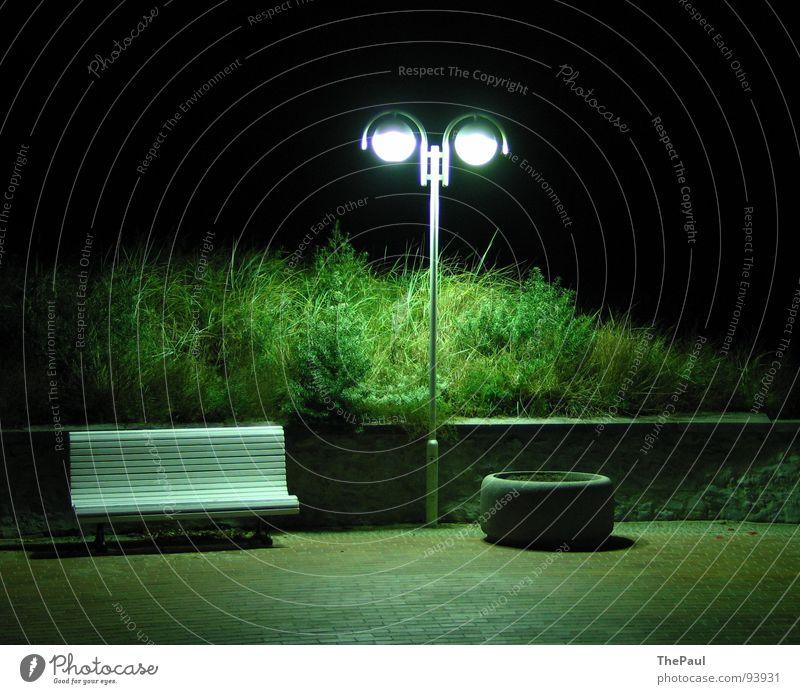 Green Loneliness Dark Garden Sadness Park Contentment Grief Bench Bushes Lantern Traffic infrastructure Street lighting Full
