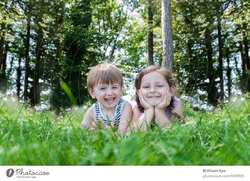 Happy children lie in the high grass Joy Trip Summer Tree Grass Meadow Forest Smiling Laughter Lie Illuminate Free Happiness Healthy Moody