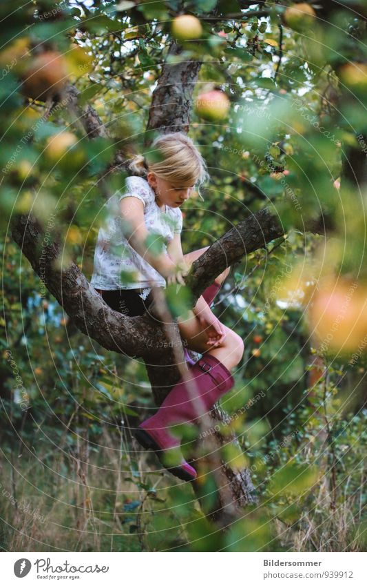 Human being Child Nature Plant Green Summer Tree Relaxation Calm Girl Environment Yellow Autumn Feminine Playing Healthy