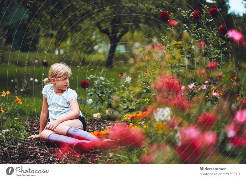 Human being Child Nature Vacation & Travel Green Summer Relaxation Loneliness Red Flower Landscape Girl Meadow Feminine Grass Garden