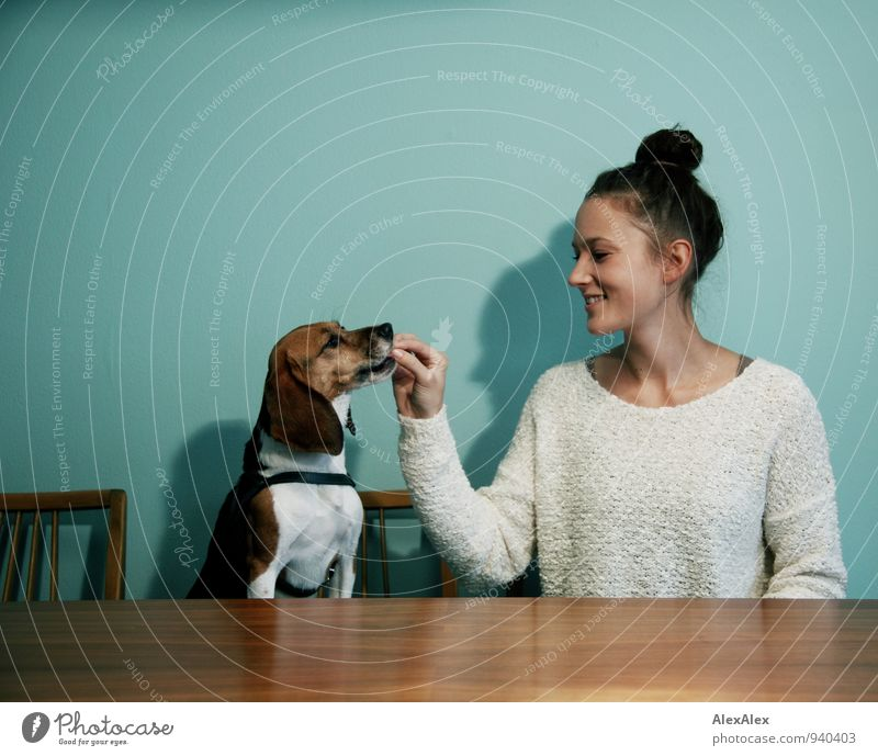 You and your pet Food Feeding Snack Kitchen Kitchen Table Young woman Youth (Young adults) 18 - 30 years Adults Brunette Chignon Pet Dog Beagle Animal reward