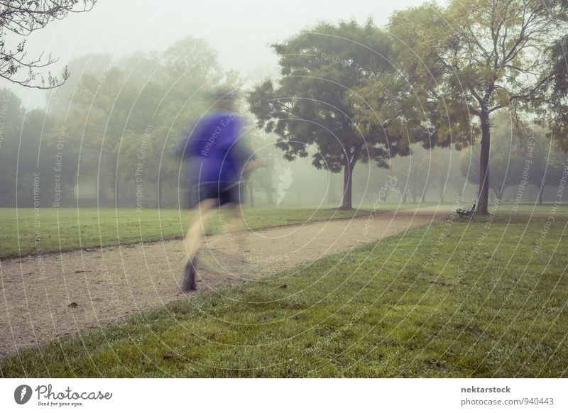 Jogging in morning fog Lifestyle Winter Sports Human being Park Fitness Sports Training Frankfurt Adults Health care in the morning Athletic Fog Cold Action